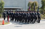 Metropolitan Fire Brigade Class 117